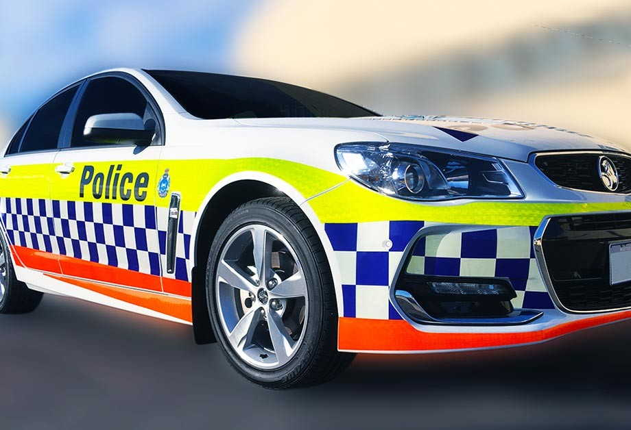 vinyl cast police car